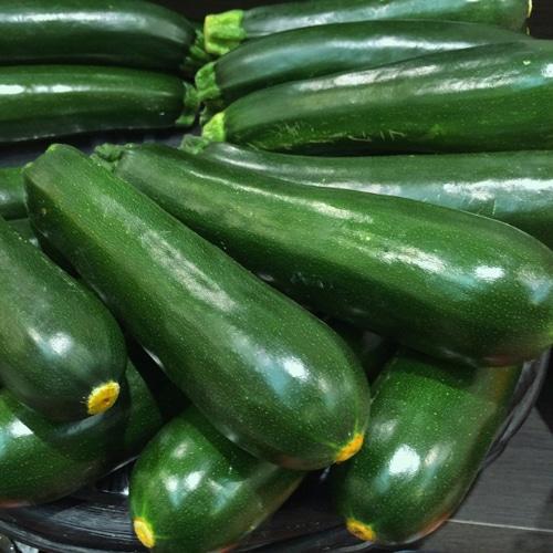 zucchini-vert.jpg